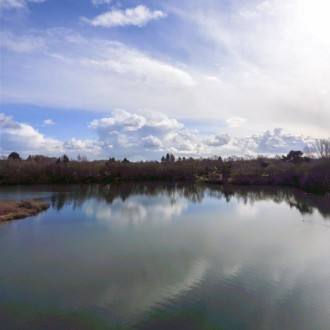 Better than a birds eye view? 360 degree panoramics